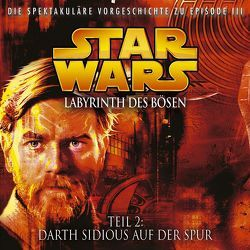 Labyrinth des Bösen 2 – Darth Sidious auf der Spur von Döring,  Oliver, Luceno,  James, Williams,  John