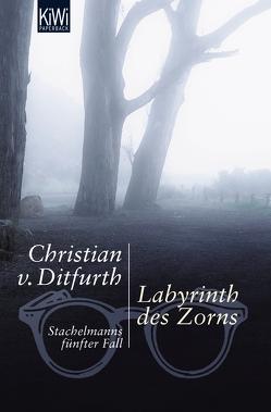 Labyrinth des Zorns von Ditfurth,  Christian von