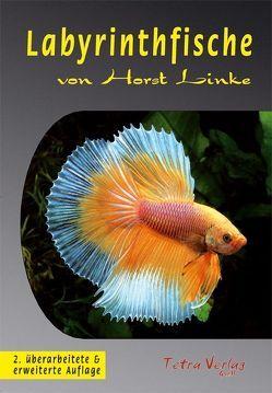Labyrinthfische von Linke,  Horst