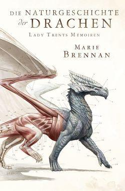 Lady Trents Memoiren: Die Naturgeschichte der Drachen von Blendl,  Andrea, Brennan,  Marie