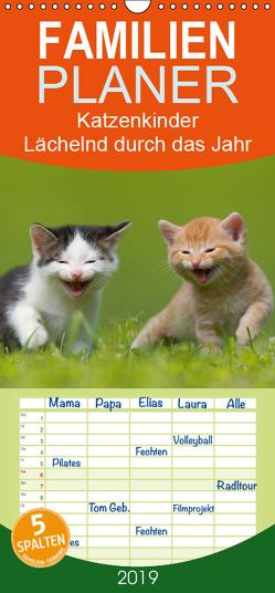 Lächelnd durchs Jahr – Katzenkinder -Familienplaner hoch (Wandkalender 2019 , 21 cm x 45 cm, hoch) von Danegger,  Susanne