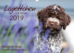 Lagöttchen (Wandkalender 2019 DIN A3 quer) von Backes,  Ulrich