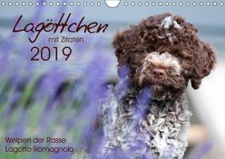 Lagöttchen (Wandkalender 2019 DIN A4 quer) von Backes,  Ulrich