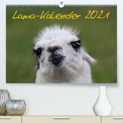 Lama-Kalender 2021 (Premium, hochwertiger DIN A2 Wandkalender 2021, Kunstdruck in Hochglanz) von Witkowski,  Bernd