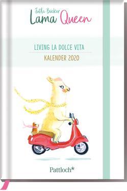 Lama Queen – Taschenkalender 2020 von Bücker,  Jutta