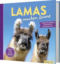 Lamas machen Laune