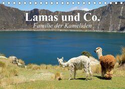 Lamas und Co. Familie der Kameliden (Tischkalender 2019 DIN A5 quer) von Stanzer,  Elisabeth