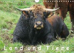 Land und Tiere (Wandkalender 2018 DIN A4 quer) von Saal,  Heribert
