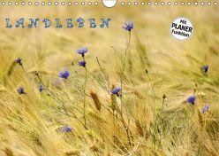 LANDLEBEN (Wandkalender 2019 DIN A4 quer)