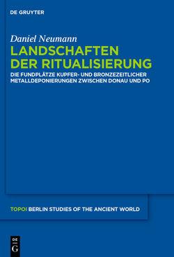 Landschaften der Ritualisierung von Neumann,  Daniel