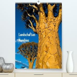 Landschaften Namibias (Premium, hochwertiger DIN A2 Wandkalender 2021, Kunstdruck in Hochglanz) von Scholz,  Frauke