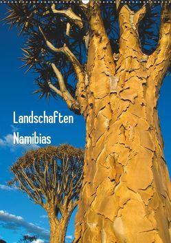 Landschaften Namibias (Wandkalender 2019 DIN A2 hoch) von Scholz,  Frauke