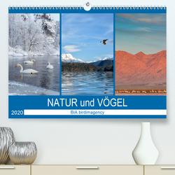 Landschaften und Vögel (Premium, hochwertiger DIN A2 Wandkalender 2020, Kunstdruck in Hochglanz) von birdimagency,  BIA