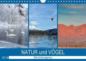 Landschaften und Vögel (Wandkalender 2018 DIN A4 quer) von birdimagency,  BIA