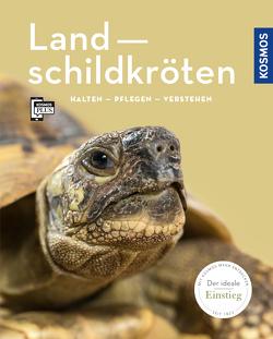 Landschildkröten von Rogner,  Manfred