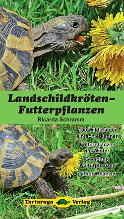 Landschildkröten-Futterpflanzen von Schramm,  Ricarda