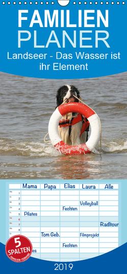 Landseer – Das Wasser ist ihr Element – Familienplaner hoch (Wandkalender 2019 , 21 cm x 45 cm, hoch) von Mielewczyk und Brigitte Weil,  Barbara
