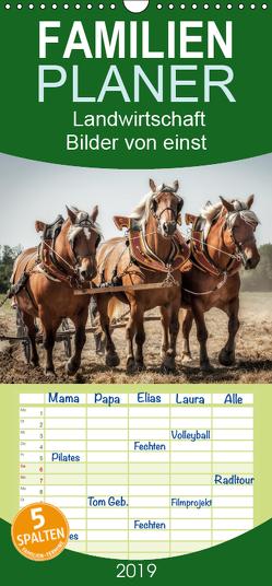 Landwirtschaft – Bilder von einst – Familienplaner hoch (Wandkalender 2019 , 21 cm x 45 cm, hoch) von Gaymard,  Alain