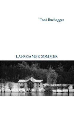 Langsamer Sommer von Buchegger,  Toni