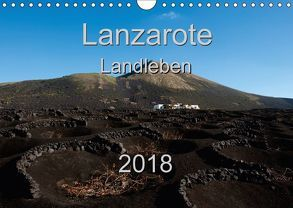 Lanzarote – Landleben (Wandkalender 2018 DIN A4 quer) von Steenblock,  Ewald