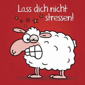 Lass dich nicht stressen! von Holzach,  Alexander