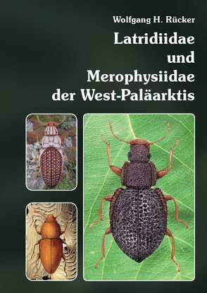Latridiidae und Merophysiidae der West-Paläarktis von Rücker,  Wolfgang H.