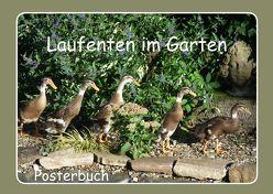 Laufenten im Garten (Posterbuch DIN A3 quer) von LoRo-Artwork,  k.A.