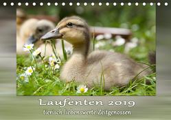 Laufenten – tierisch liebenswerte Zeitgenossen (Tischkalender 2019 DIN A5 quer) von Storm,  Wiebke