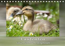 Laufenten – tierisch liebenswerte Zeitgenossen (Tischkalender 2020 DIN A5 quer) von Storm,  Wiebke