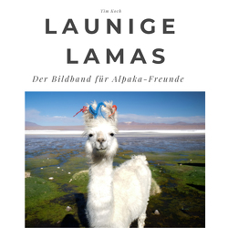 Launige Lamas von Koch,  Tim