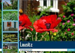Lausitz bis Spreewald (Wandkalender 2019 DIN A2 quer) von Nordstern