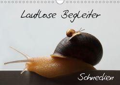 Lautlose Begleiter – Schnecken (Wandkalender 2019 DIN A4 quer) von Geiling,  Wibke