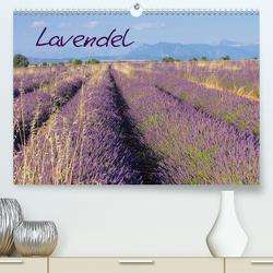 Lavendel (Premium, hochwertiger DIN A2 Wandkalender 2021, Kunstdruck in Hochglanz) von LianeM