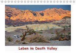 Leben im Death Valley (Tischkalender 2019 DIN A5 quer) von Wilczek,  Dieter-M.