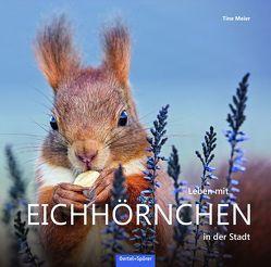 Leben mit Eichhörnchen in der Stadt von Meier,  Tine