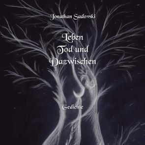 Leben Tod und Dazwischen von Sadovski,  Jonathan