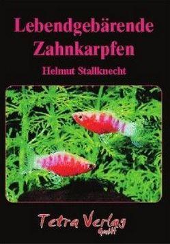 Lebendgebärende Zahnkarpfen von Stallknecht,  Helmut