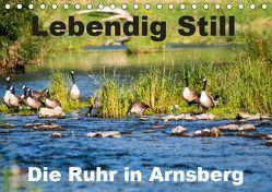 Lebendig Still – Die Ruhr in Arnsberg (Tischkalender 2019 DIN A5 quer) von CM