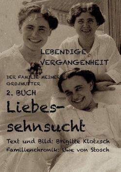 Lebendige Vergangenheit der Familie meiner Großmutter, 2. Buch von Klotzsch,  Brigitte