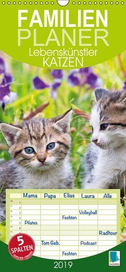 Lebenskünstler Katzen – Familienplaner hoch (Wandkalender 2019 , 21 cm x 45 cm, hoch) von CALVENDO