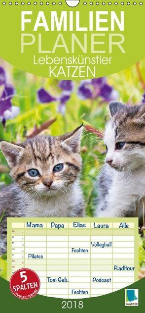Lebenskünstler Katzen (Wandkalender 2018 PRO_49_format hoch) von CALVENDO,  k.A.
