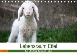 Lebensraum Eifel (Tischkalender 2018 DIN A5 quer) von Knoden,  Elke