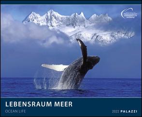 Lebensraum Meer 2022 – Bild-Kalender – Wand-Planer – 60×50
