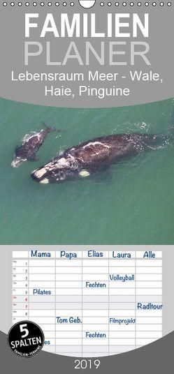 Lebensraum Meer – Wale, Haie, Pinguine – Familienplaner hoch (Wandkalender 2019 , 21 cm x 45 cm, hoch) von und Yvonne Herzog,  Michael