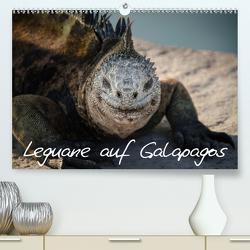Leguane auf Galapagos (Premium, hochwertiger DIN A2 Wandkalender 2021, Kunstdruck in Hochglanz) von Binder,  Ralph