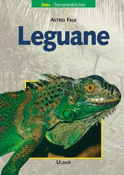 Leguane von Falk,  Astrid