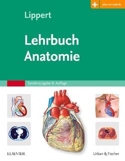 Lehrbuch Anatomie von Lippert,  Herbert