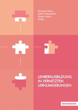 Lehrerausbildung in vernetzten Lernumgebungen von Mayer,  Jürgen, Meier,  Monique, Ziepprecht,  Kathrin