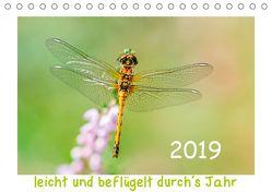 leicht und beflügelt durch´s Jahr 2019 (Tischkalender 2019 DIN A5 quer) von Beyer (Moqui),  Daniela
