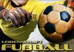 Leidenschaft Fußball (Wandkalender 2019 DIN A2 quer) von Bleicher,  Renate